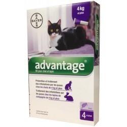 ADVANTAGE 4PIP 0,8ML SPOT-ON